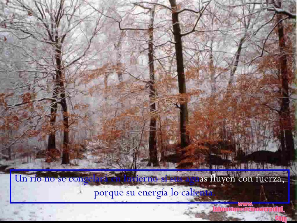 Un río no se congelará en Invierno si sus aguas fluyen con fuerza, porque su energía lo calienta.