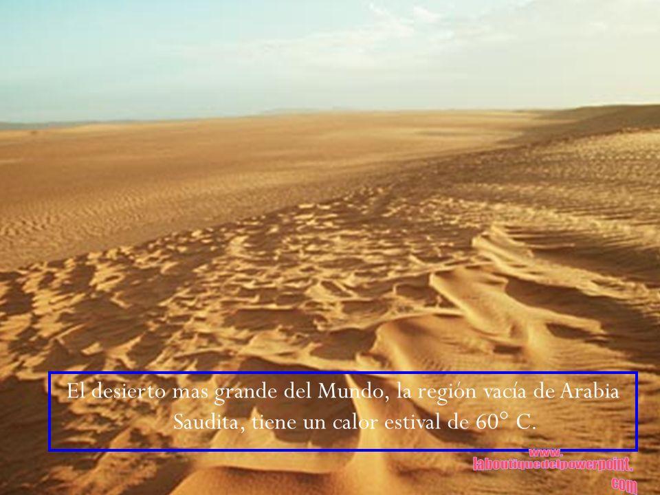 El desierto mas grande del Mundo, la región vacía de Arabia Saudita, tiene un calor estival de 60° C.