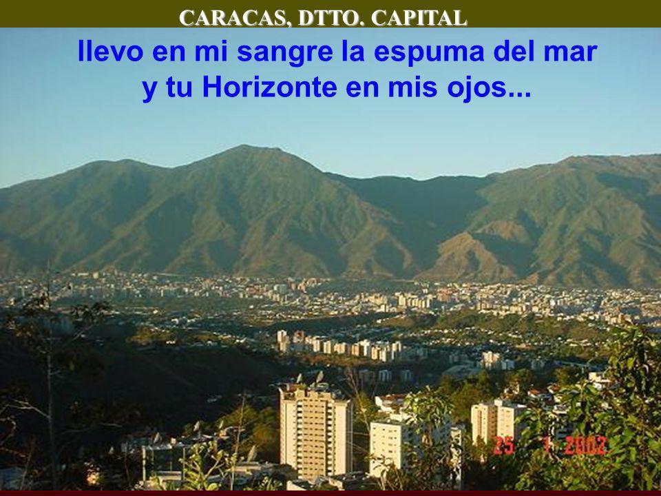 CARACAS, DTTO. CAPITAL llevo en mi sangre la espuma del mar y tu Horizonte en mis ojos...