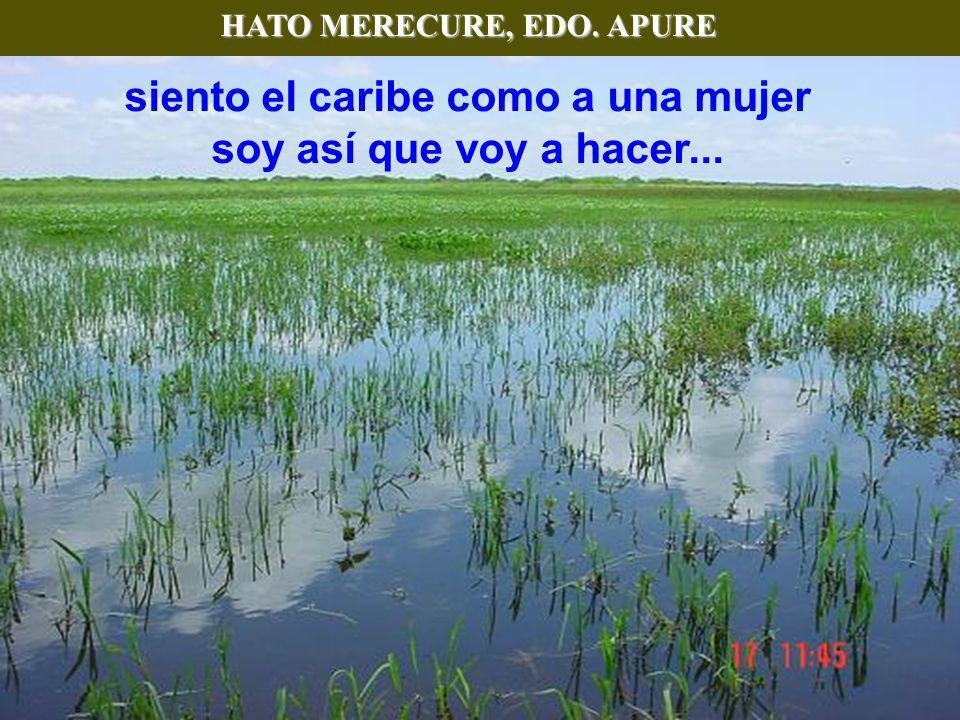 PICO BOLÍVAR, EDO. MÉRIDA Pico más alto de Venezuela, Teleférico más alto y largo del mundo! No envidio el vuelo ni el nido al turpial soy como el vie