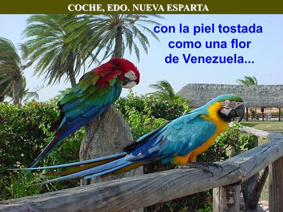 COCHE, EDO. NUEVA ESPARTA con la piel tostada como una flor de Venezuela...