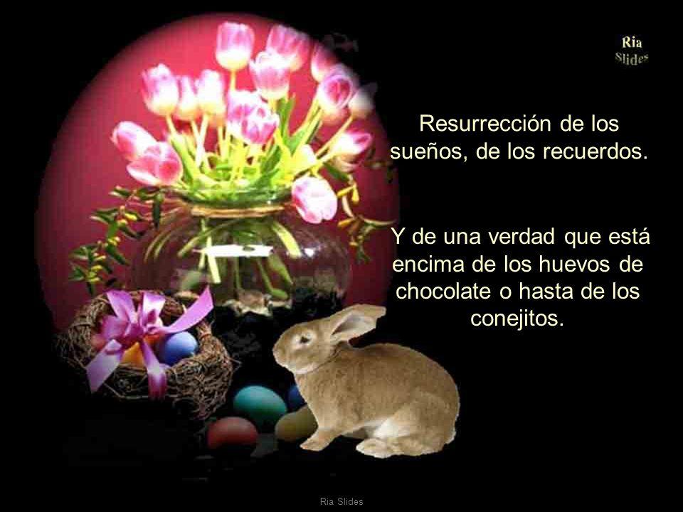 Ria Slides Resurrección de la sonrisa, de la alegría de vivir, del amor.