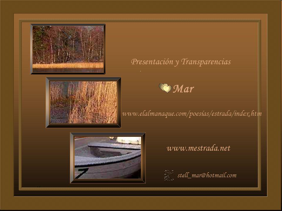 Mar www.mestrada.net www.elalmanaque.com/poesías/estrada/index.htm Presentación y Transparencias stell_mar@hotmail.com