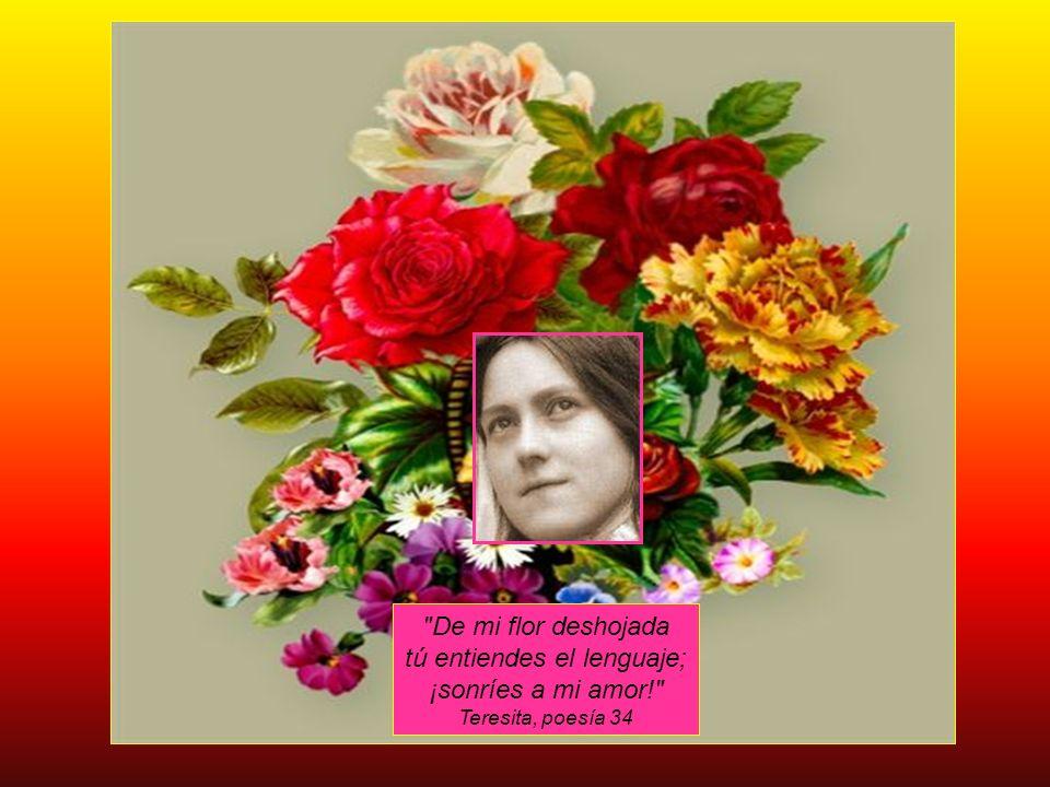 TERESITA DE LISIEUX FAMILIA DE SANTIDAD CENTRO DE ESPIRITUALIDAD LA FONTE Pedro Sergio Antonio Donoso Brant ocds 1 de Octubre de 2008