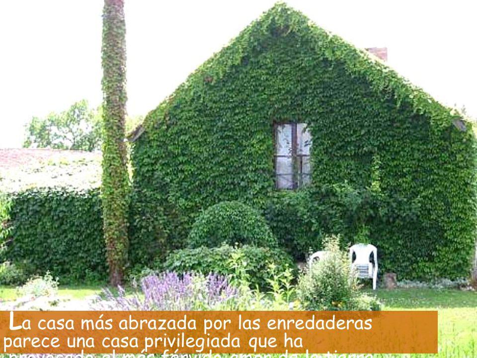 L a casa más abrazada por las enredaderas parece una casa privilegiada que ha provocado el más férvido amor de la tierra.