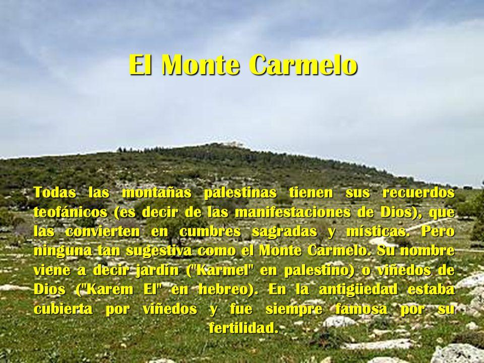 El Monte Carmelo Todas las montañas palestinas tienen sus recuerdos teofánicos (es decir de las manifestaciones de Dios), que las convierten en cumbre
