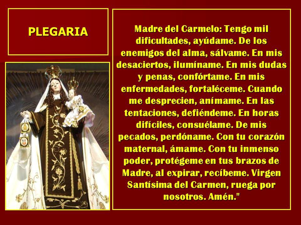 Madre del Carmelo: Tengo mil dificultades, ayúdame. De los enemigos del alma, sálvame. En mis desaciertos, ilumíname. En mis dudas y penas, confórtame