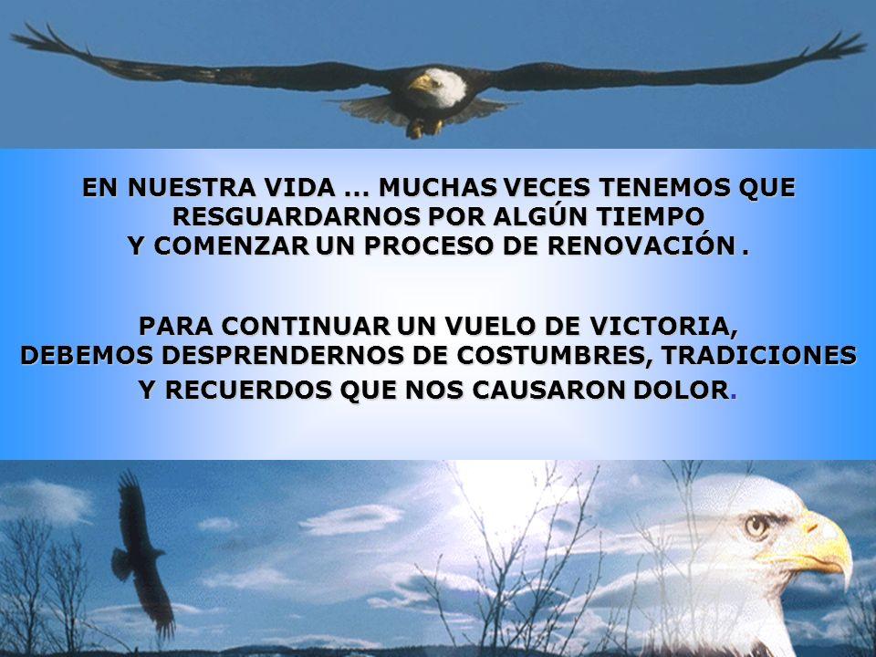 Este es el motivo por el cual hemos adoptado al Aguila como simbolo de nuestra asociación.