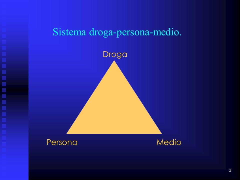 3 Droga PersonaMedio Sistema droga-persona-medio.