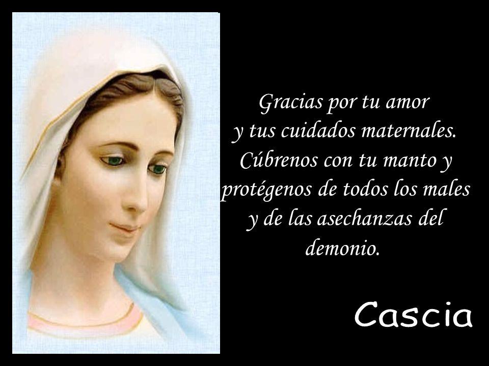 Madre Nuestra, este amor, este fuego, esta agua viva es urgente que Dios permita a sus sacerdotes experimentarlos, para su propia paz, alegría y salva