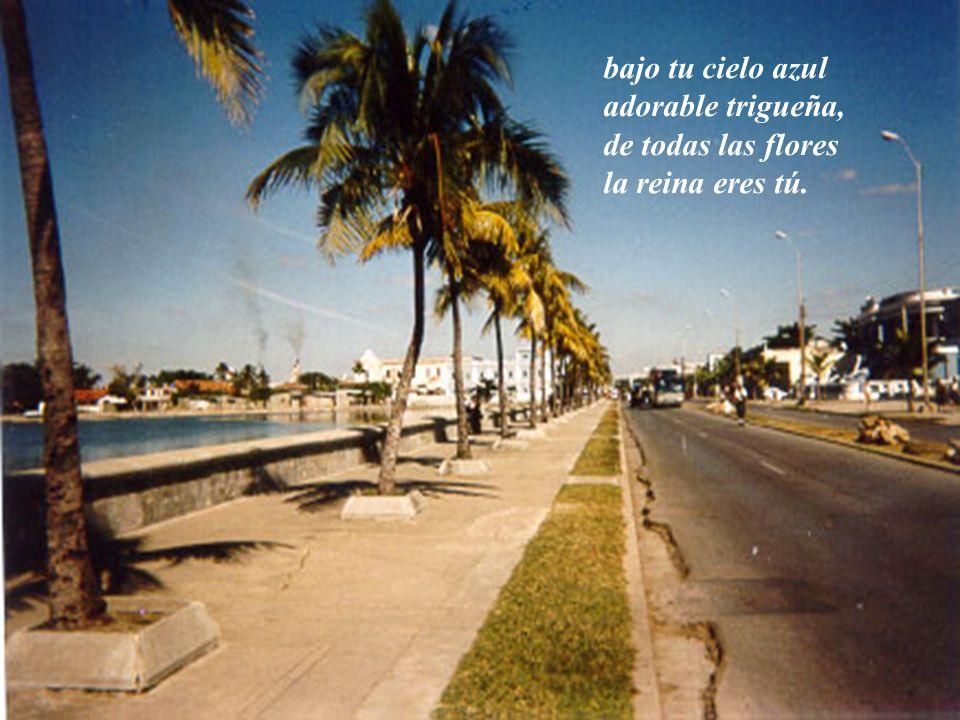 bendici é ndote hermosa sin par, por que Cuba eres t ú.