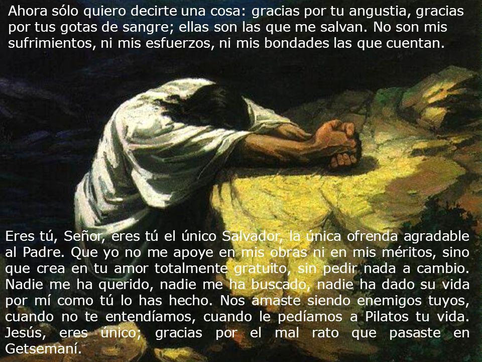 Eres tú, Señor, eres tú el único Salvador, la única ofrenda agradable al Padre. Que yo no me apoye en mis obras ni en mis méritos, sino que crea en tu