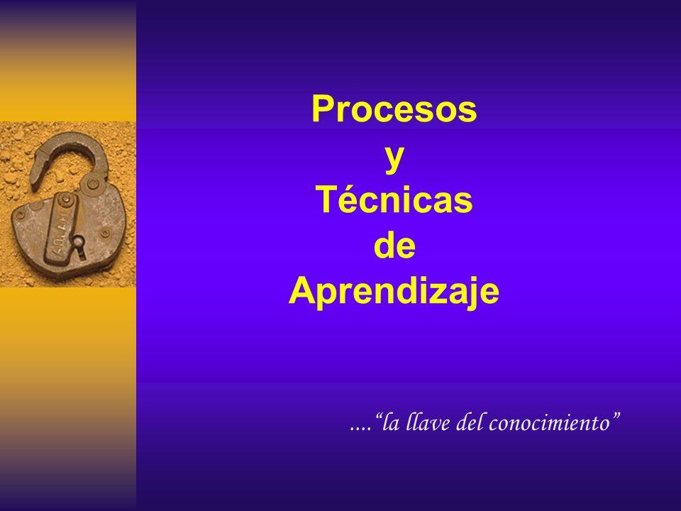 Procesos y Técnicas de Aprendizaje....la llave del conocimiento