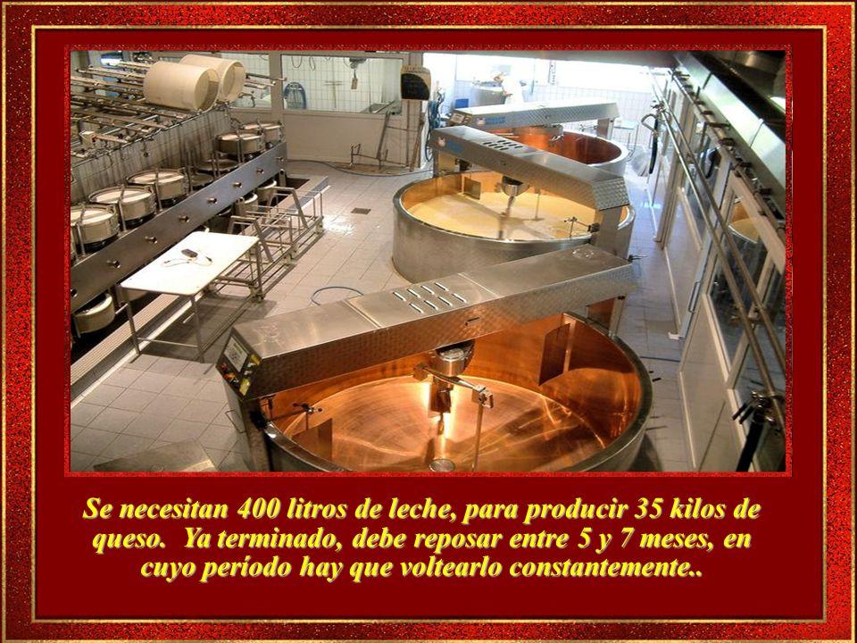 Visitar las fábricas de Queso es toda una experiencia.