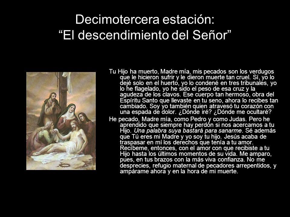 Decimotercera estación: El descendimiento del Señor Tu Hijo ha muerto, Madre mía, mis pecados son los verdugos que le hicieron sufrir y le dieron muerte tan cruel.
