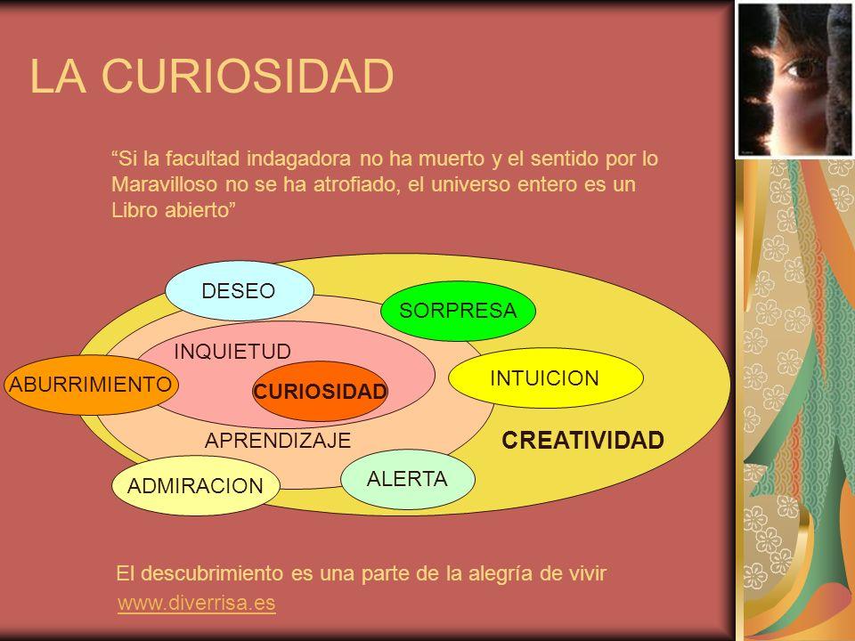 La curiosidad es un estado mental de apertura a lo que tenemos a nuestro alrededor.