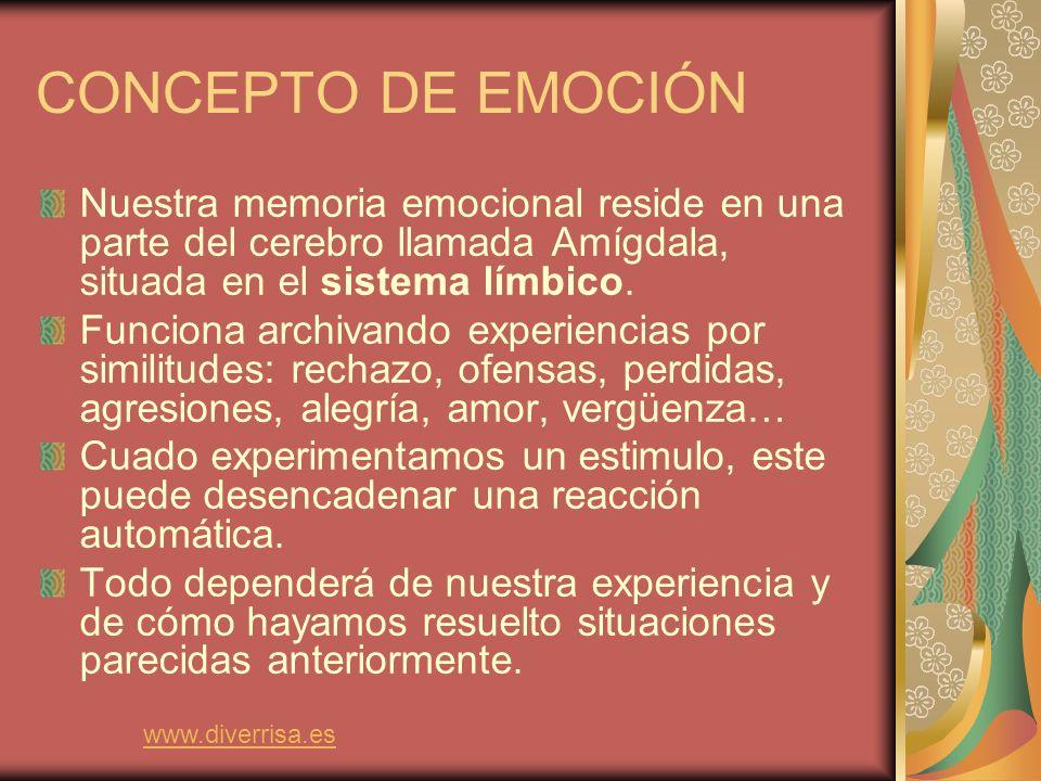 El Sistema Nervioso Emocional Lóbulo frontal www.diverrisa.es