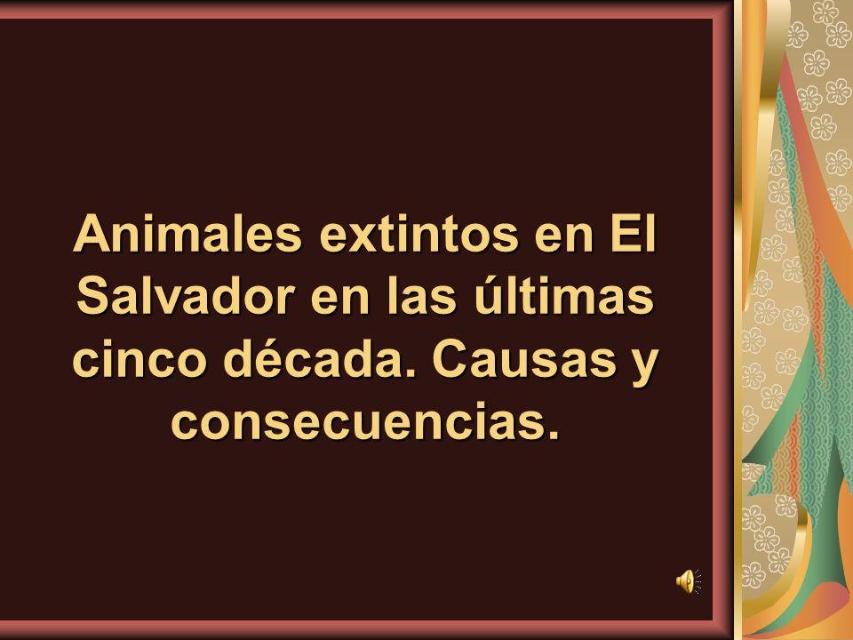 Animales extintos en El Salvador en las últimas cinco década. Causas y consecuencias.