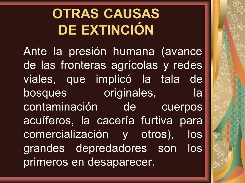 Ante la presión humana (avance de las fronteras agrícolas y redes viales, que implicó la tala de bosques originales, la contaminación de cuerpos acuíf