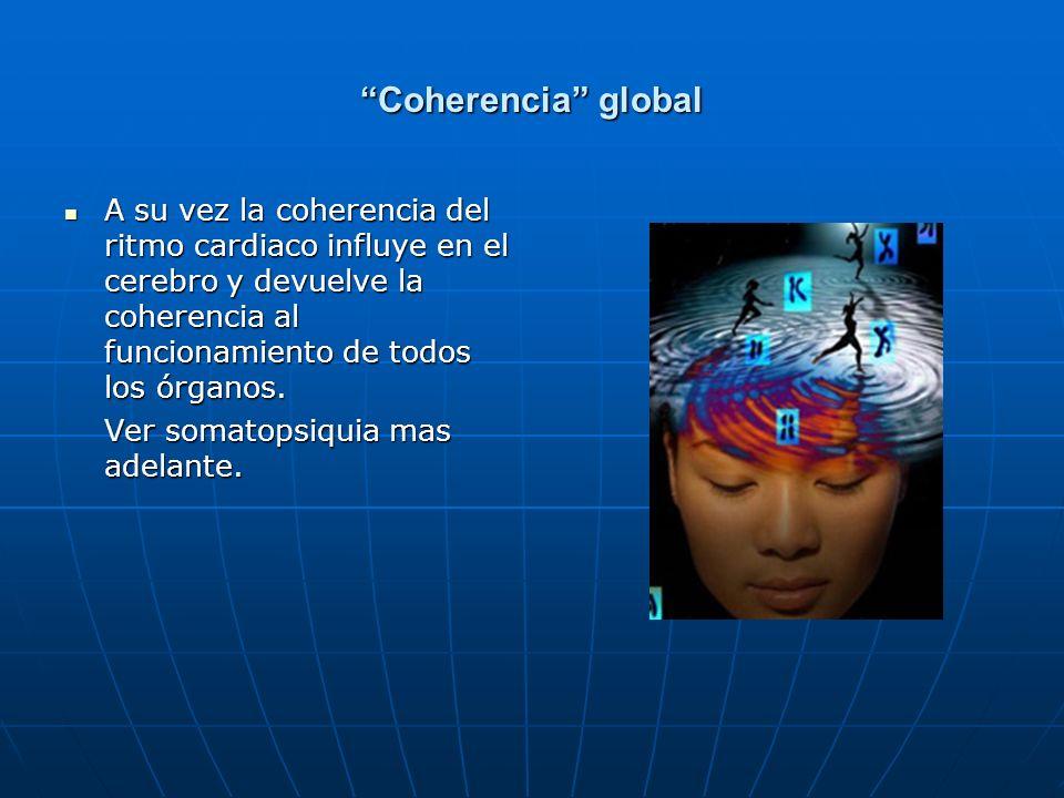 Coherencia global A su vez la coherencia del ritmo cardiaco influye en el cerebro y devuelve la coherencia al funcionamiento de todos los órganos. A s