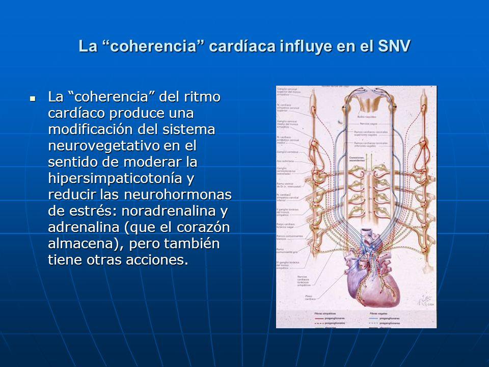 La coherencia cardíaca influye en el SNV La coherencia del ritmo cardíaco produce una modificación del sistema neurovegetativo en el sentido de modera