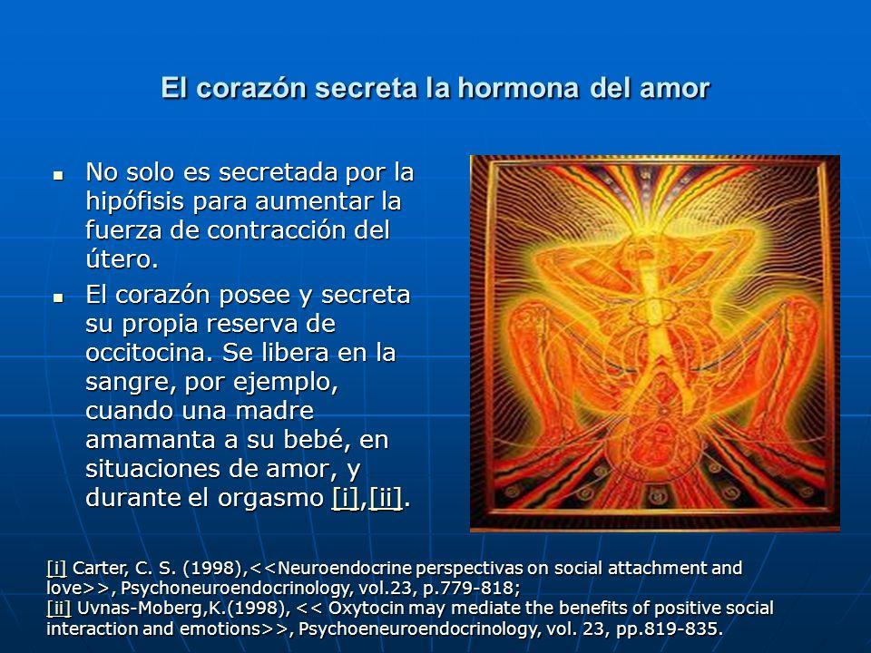 El corazón secreta la hormona del amor No solo es secretada por la hipófisis para aumentar la fuerza de contracción del útero. No solo es secretada po