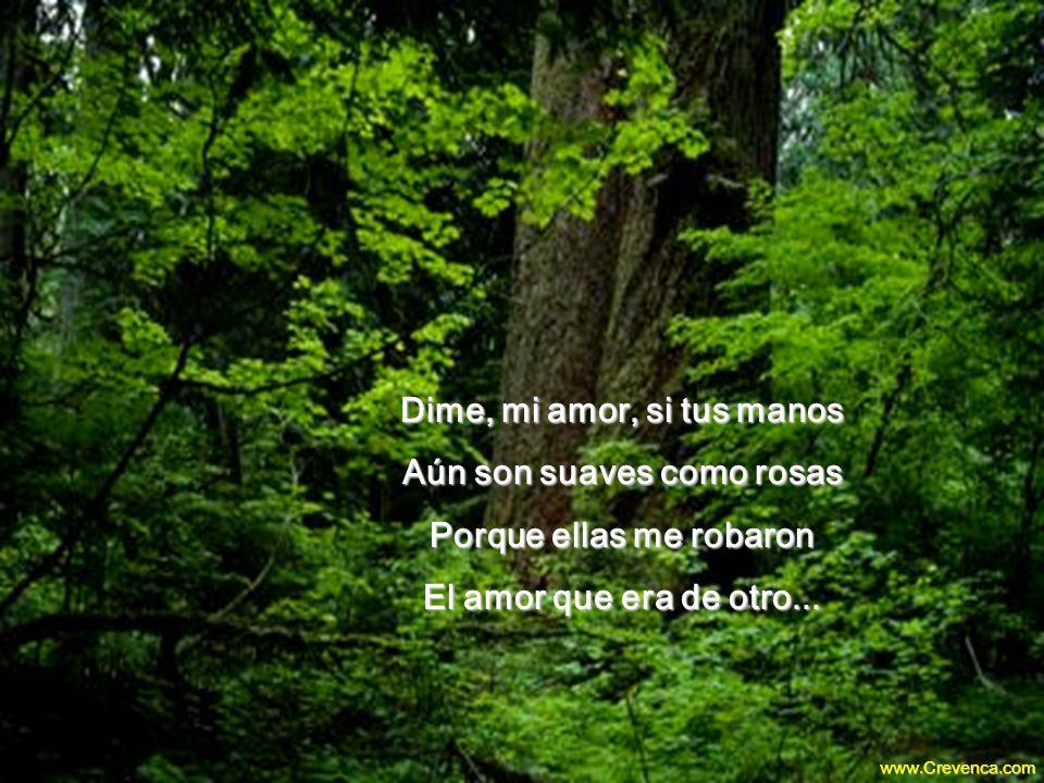 Dime (Maria Hilda de J.