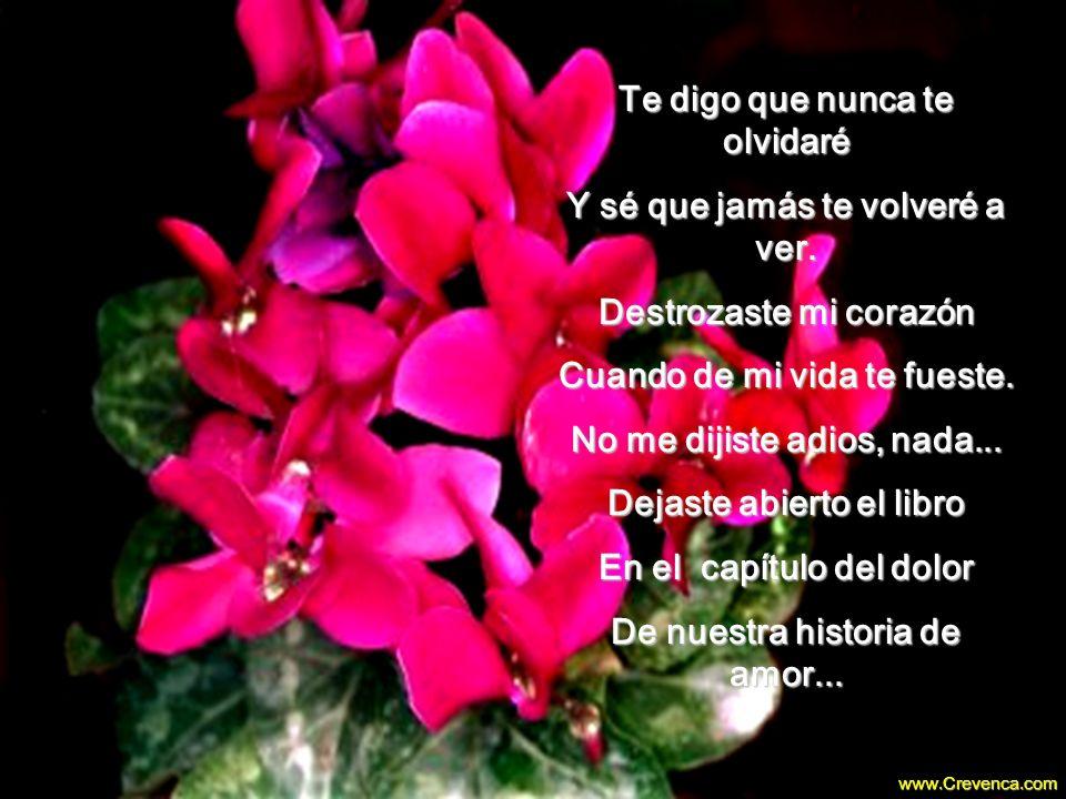Dime, mi amor, si tus manos Aún son suaves como rosas Porque ellas me robaron El amor que era de otro... 00 00 02 www.Crevenca.com