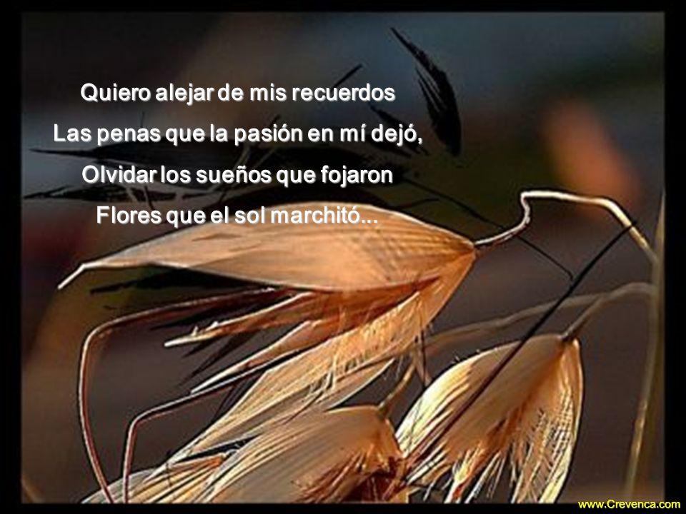 Quiero alejar de mis recuerdos Las penas que la pasión en mí dejó, Olvidar los sueños que fojaron Flores que el sol marchitó...