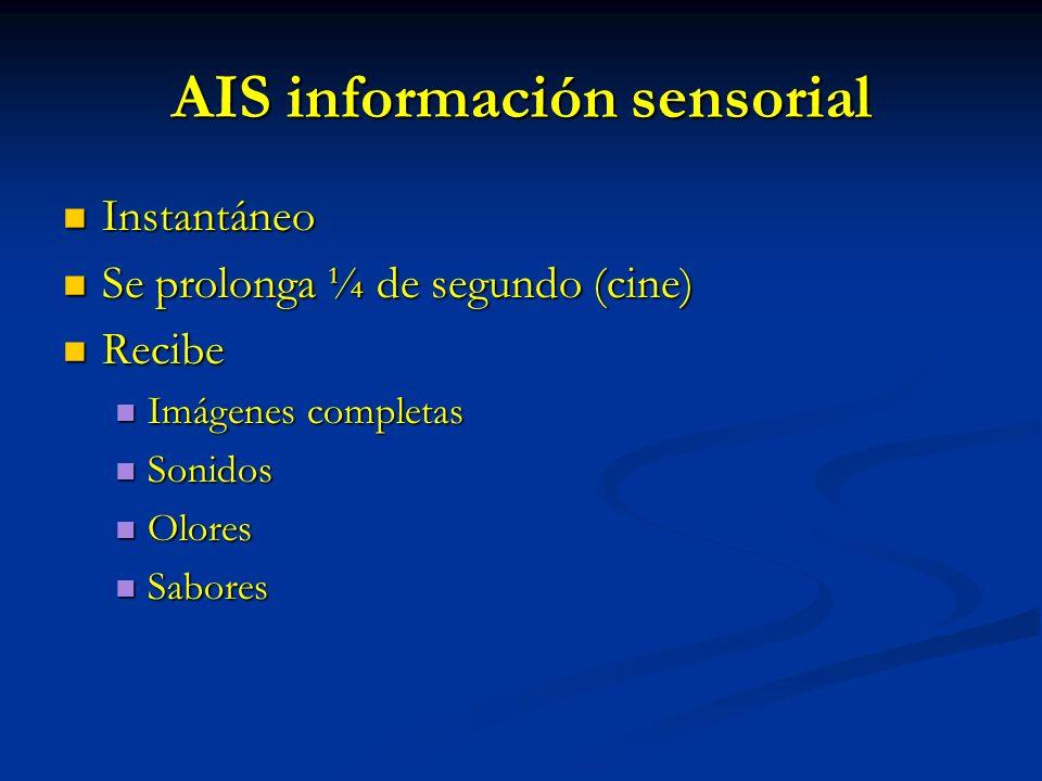 AIS información sensorial Instantáneo Instantáneo Se prolonga ¼ de segundo (cine) Se prolonga ¼ de segundo (cine) Recibe Recibe Imágenes completas Imá