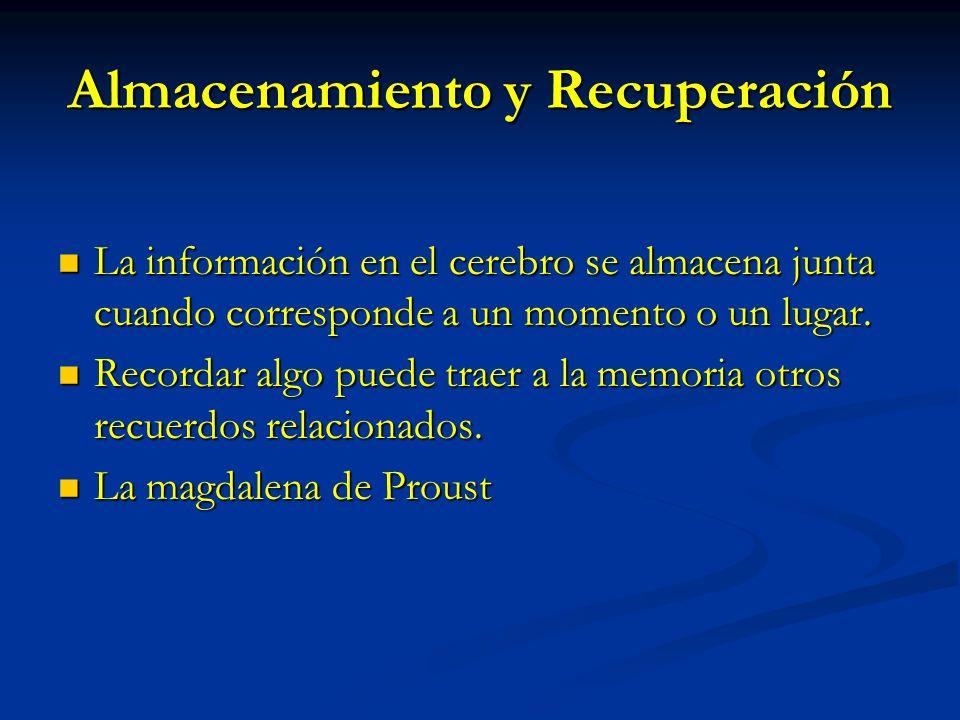 Almacenamiento y Recuperación La información en el cerebro se almacena junta cuando corresponde a un momento o un lugar. La información en el cerebro