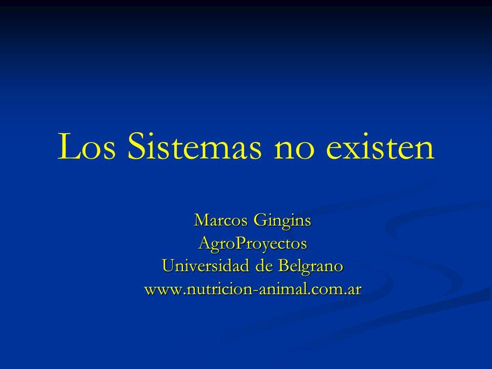 Los Sistemas no existen Marcos Gingins AgroProyectos Universidad de Belgrano www.nutricion-animal.com.ar