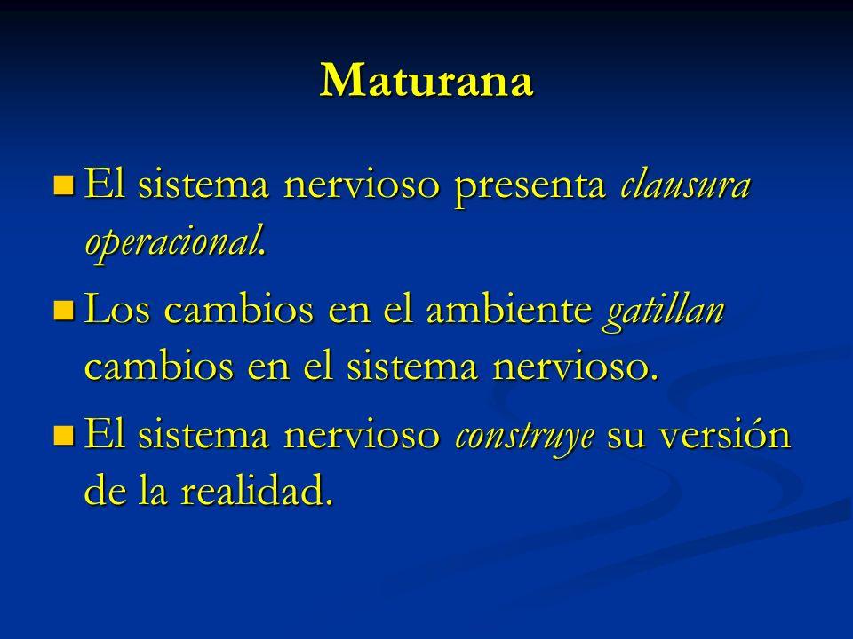Maturana El sistema nervioso presenta clausura operacional. El sistema nervioso presenta clausura operacional. Los cambios en el ambiente gatillan cam