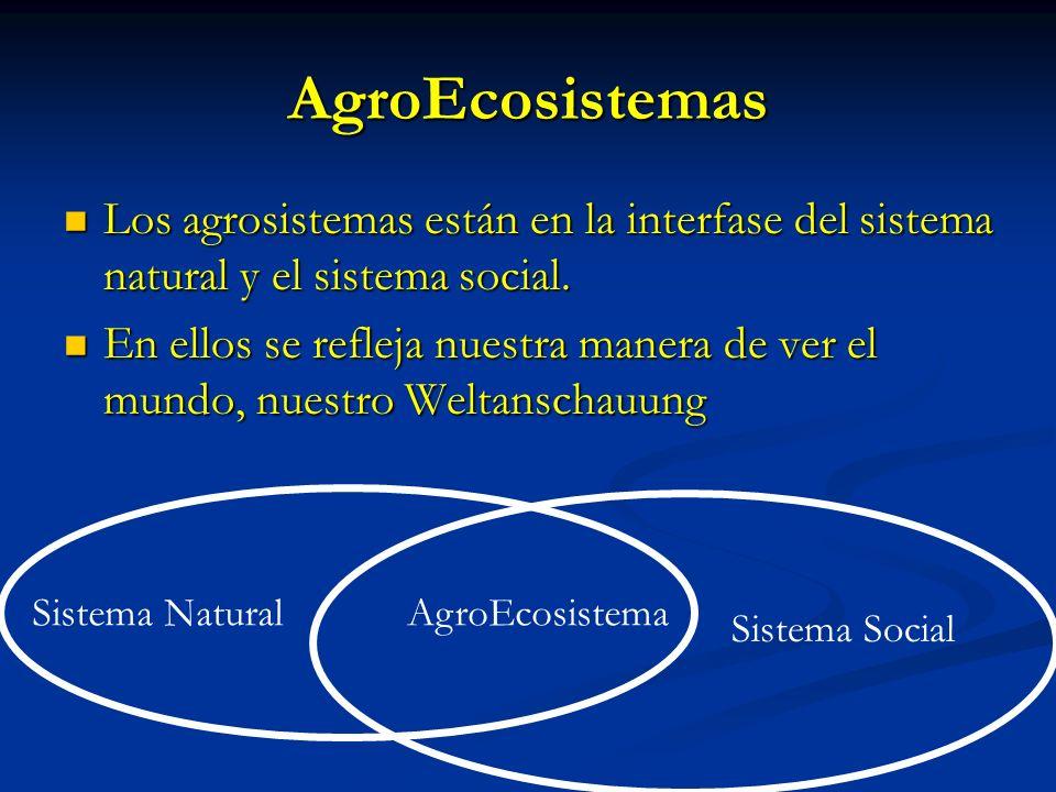 AgroEcosistemas Los agrosistemas están en la interfase del sistema natural y el sistema social. Los agrosistemas están en la interfase del sistema nat