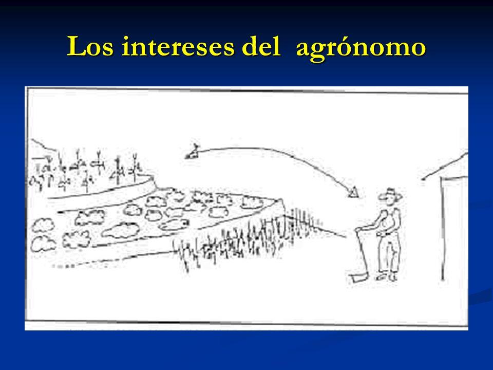 Los intereses del agrónomo