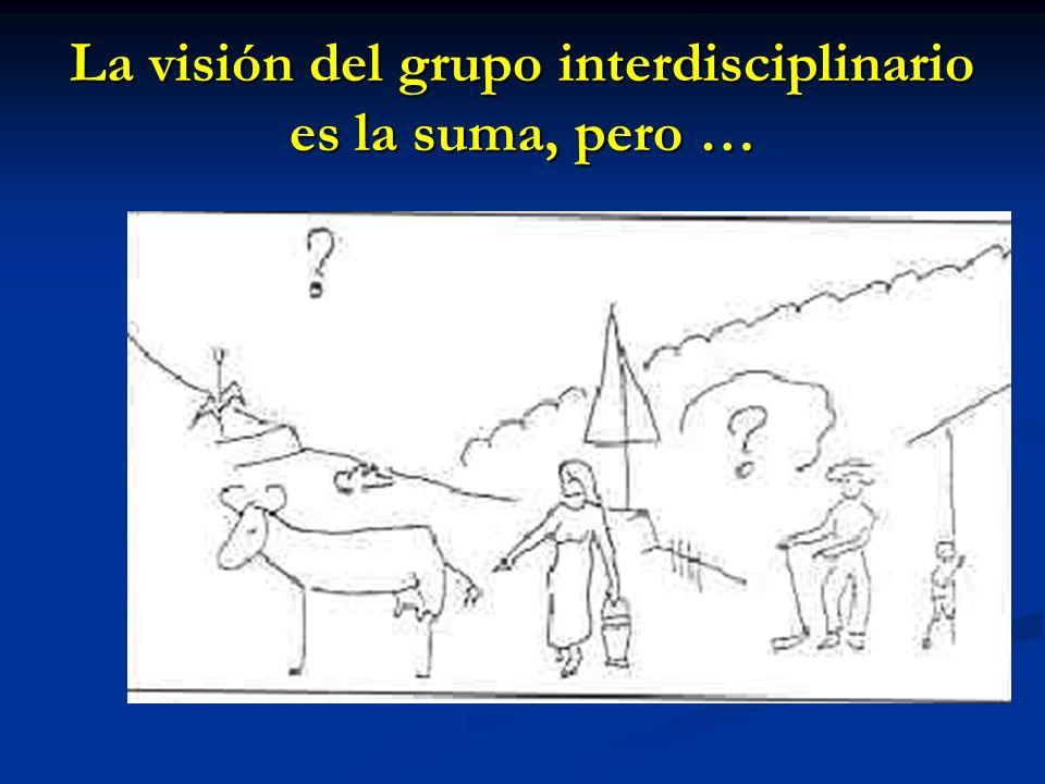 La visión del grupo interdisciplinario es la suma, pero …