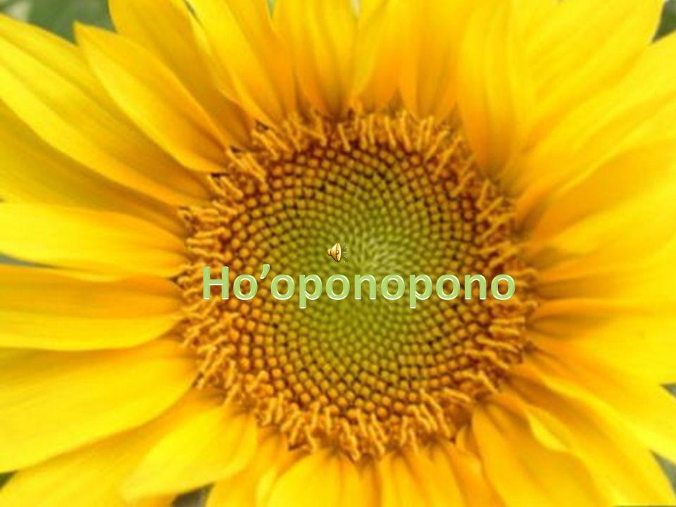 Con el hooponopono estamos asumiendo la responsabilidad por las memorias en comun que compartimos con otras personas.
