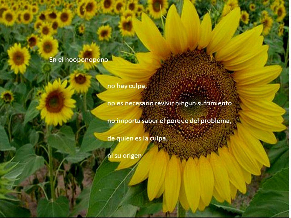 En el hooponopono no hay culpa, no es necesario revivir ningun sufrimiento no importa saber el porque del problema, de quien es la culpa, ni su origen