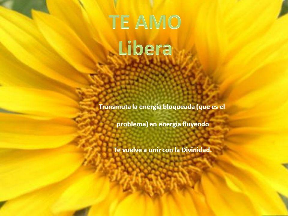 Transmuta la energia bloqueada (que es el problema) en energia fluyendo Te vuelve a unir con la Divinidad.