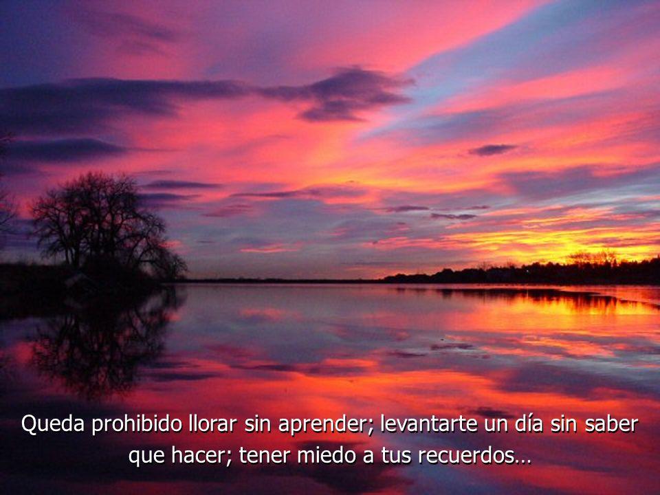 Queda prohibido llorar sin aprender; levantarte un día sin saber que hacer; tener miedo a tus recuerdos…