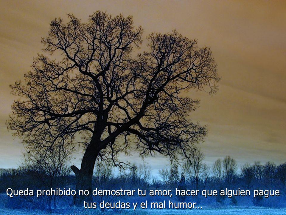 Queda prohibido no sonreír a los problemas; no luchar por lo que quieres; abandonarlo todo por miedo; no convertir en realidad tus sueños...