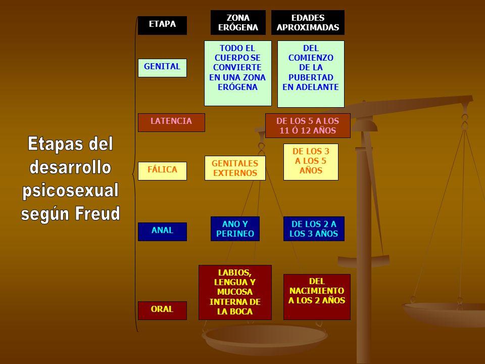 ETAPA ZONA ERÓGENA EDADES APROXIMADAS ORAL LABIOS, LENGUA Y MUCOSA INTERNA DE LA BOCA DEL NACIMIENTO A LOS 2 AÑOS ANAL ANO Y PERINEO DE LOS 2 A LOS 3 AÑOS FÁLICA GENITALES EXTERNOS DE LOS 3 A LOS 5 AÑOS LATENCIADE LOS 5 A LOS 11 Ó 12 AÑOS GENITAL TODO EL CUERPO SE CONVIERTE EN UNA ZONA ERÓGENA DEL COMIENZO DE LA PUBERTAD EN ADELANTE