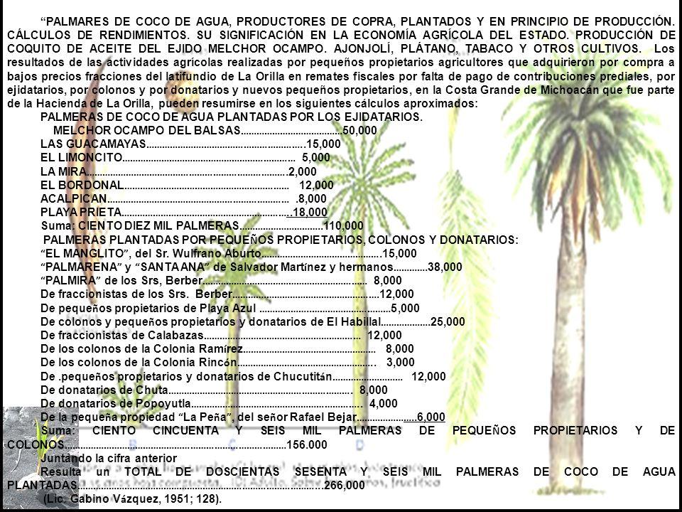 TOMO II CAPÍTULO IX (1900-1950) - TERCERA Y ÚLTIMA PARTE- MUCHOS SISMOS Y EL GRAL. LÁZARO CÁRDENAS DEL RÍO INICIA LA REPOBLACIÓN Y TRANSFORMACIÓN DEL