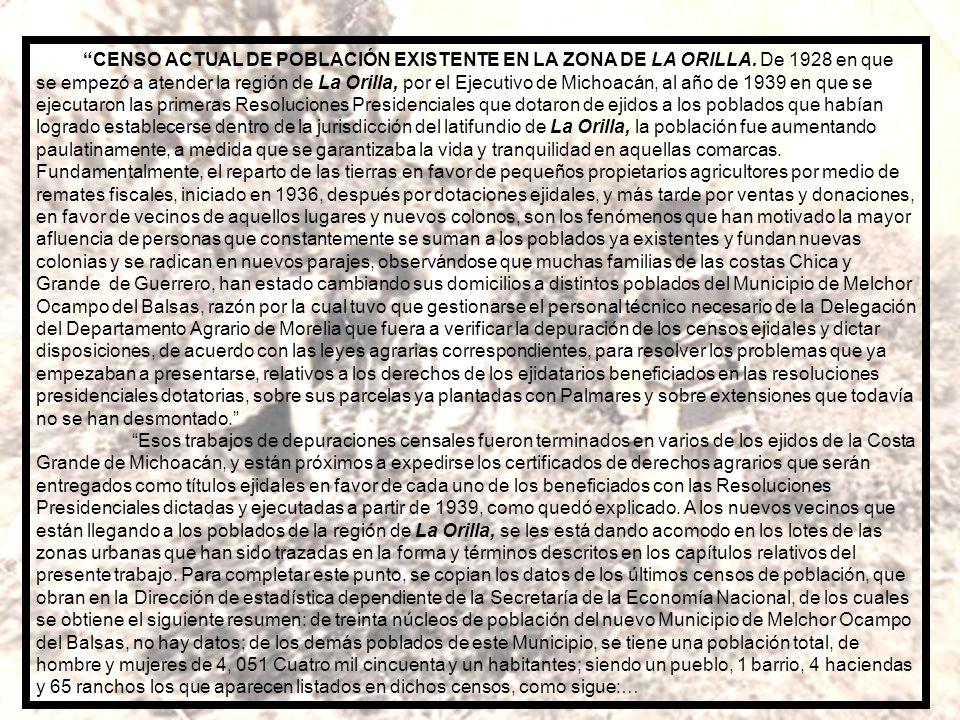 PALMARES DE COCO DE AGUA, PRODUCTORES DE COPRA, PLANTADOS Y EN PRINCIPIO DE PRODUCCIÓN. CÁLCULOS DE RENDIMIENTOS. SU SIGNIFICACIÓN EN LA ECONOMÍA AGRÍ