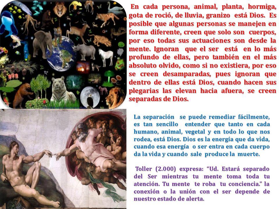 En cada persona, animal, planta, hormiga, gota de roció, de lluvia, granizo está Dios. Es posible que algunas personas se manejen en forma diferente,