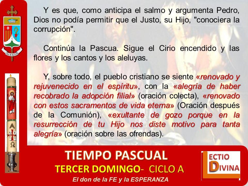TERCER DOMINGOCICLO A TERCER DOMINGO- CICLO A El don de la FE y la ESPERANZA Y es que, como anticipa el salmo y argumenta Pedro, Dios no podía permiti