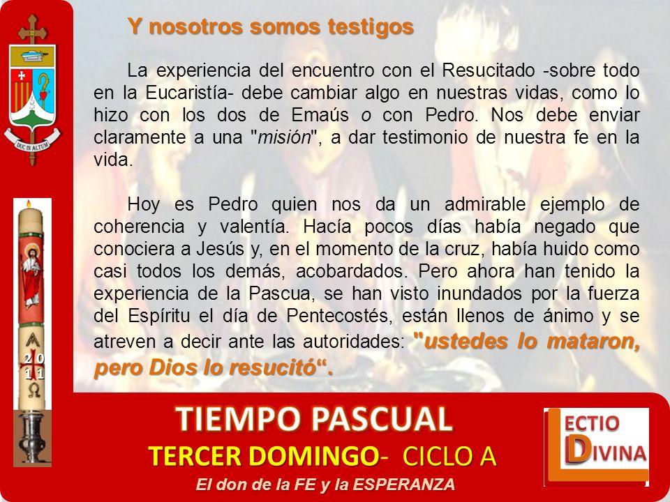 TERCER DOMINGOCICLO A TERCER DOMINGO- CICLO A El don de la FE y la ESPERANZA Y nosotros somos testigos La experiencia del encuentro con el Resucitado