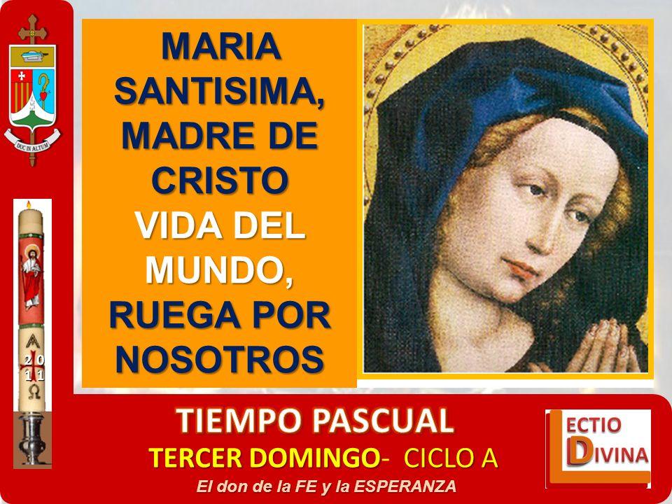 TERCER DOMINGOCICLO A TERCER DOMINGO- CICLO A El don de la FE y la ESPERANZA MARIA SANTISIMA, MADRE DE CRISTO VIDA DEL MUNDO, RUEGA POR NOSOTROS