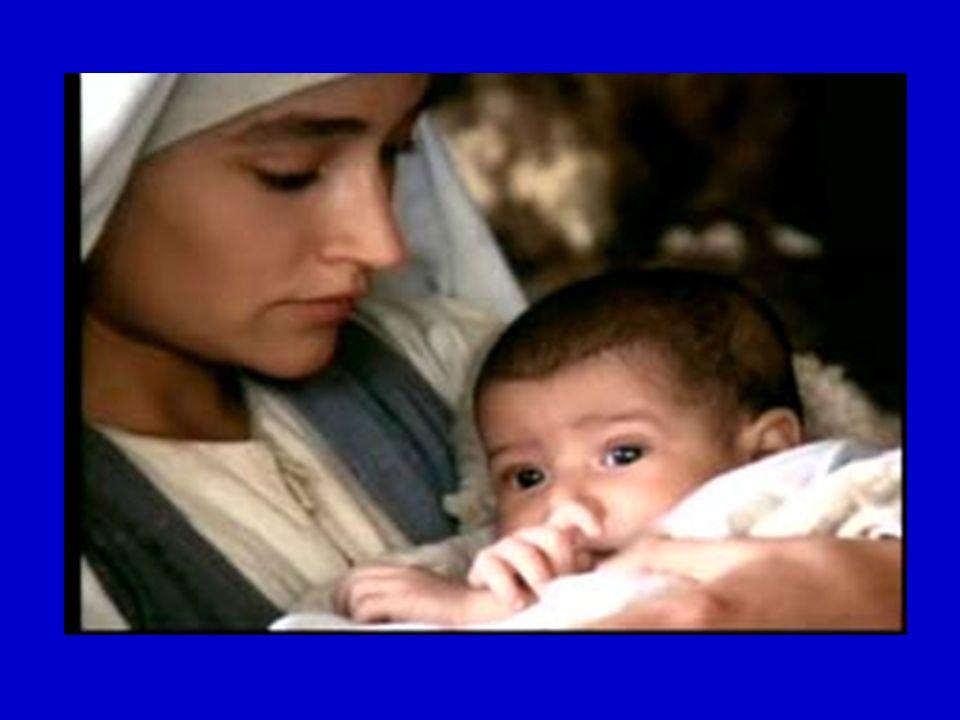 José se levantó, tomó al niño y a su madre de noche, y se fue a Egipto.
