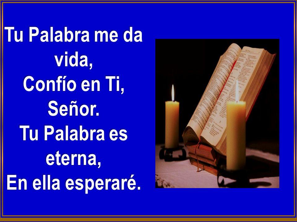 Dichoso el que con Vida intachable Camina en la ley del Señor Dichoso el que guardando Sus preceptos Lo busca de todo corazón